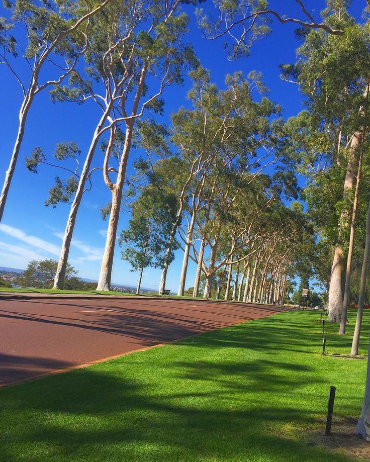 昨日はkings parkに行ってきた #kingspark#perth#australia#studyabroad#オーストラリア#パース#留学 by mikistudyabroad