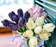 flowers | via Facebook