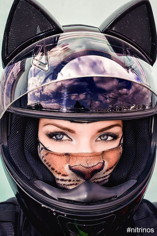 Cute Cat Motorbike Helmets Maintain The Sweetest Biker Unhealthy Asses Protected