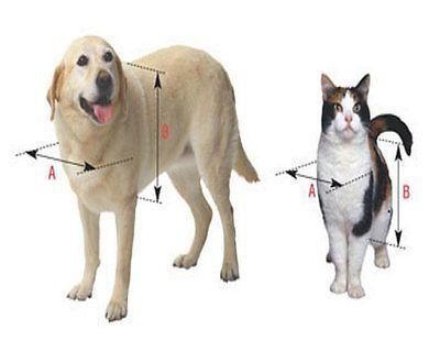 Pet Door Replacement Flap