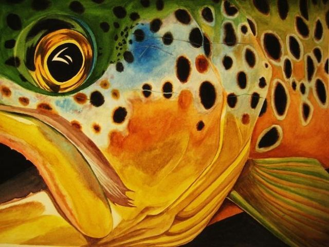 art + brown | Mvtoro's Trout Watercolor Paintings - Arizona Fly Fishing Forums