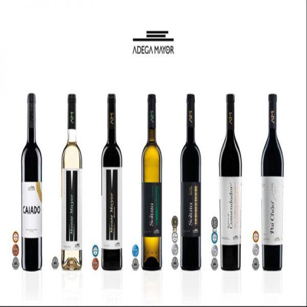 Os vinhos da Adega Mayor confirmam, uma vez mais, a sua qualidade ao serem premiados nos mais prestigiados Concursos Internacionais e Nacionais de 2017: Decanter World Wines Awards 2017 (DWWA); Concurso Mundial de Bruxelas de 2017; International Wine Challenge (IWC); Concurso Vinhos de Portugal.