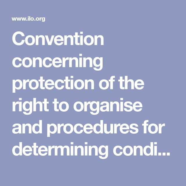 Convention concerning protection of the right to organise and procedures for determining conditions of employment in the public service. Labour Relations (Public Service) Convention, 1978 (No. 151). Geneva: International Labour Organization; 1978