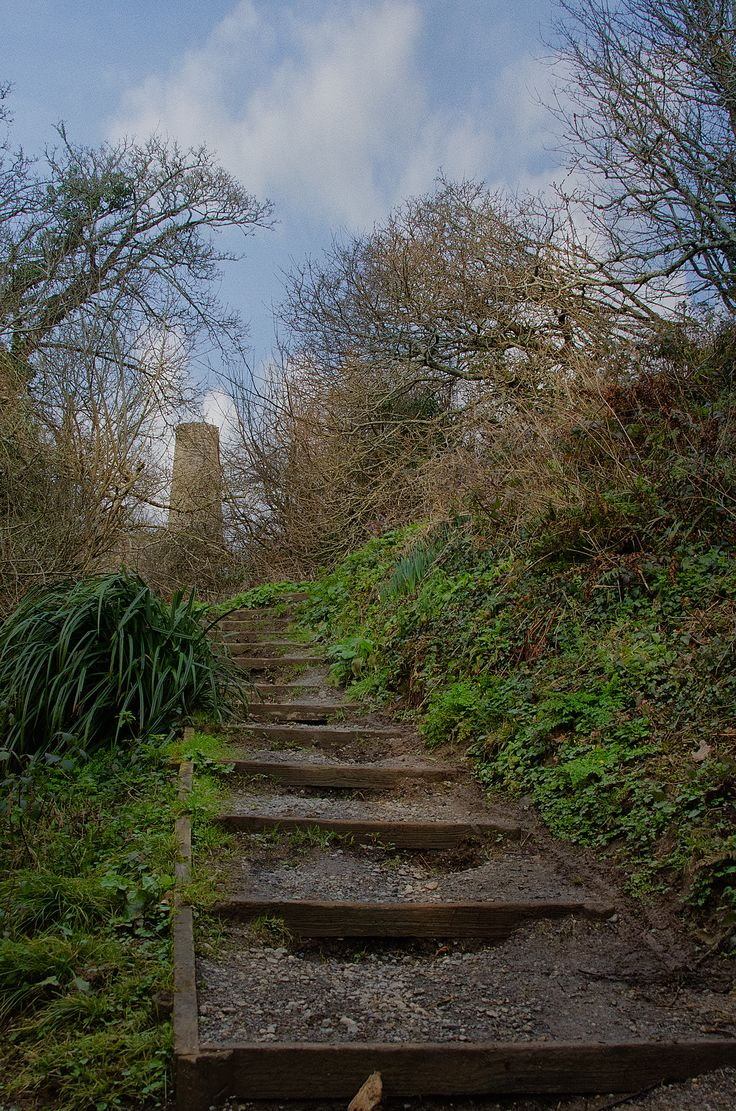 penrose2.  How many times have I walked up these steps with my dog, I'v lost count.