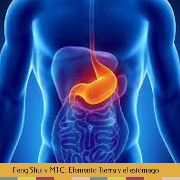 Feng Shui y MTC - Elemento Tierra y el estómago