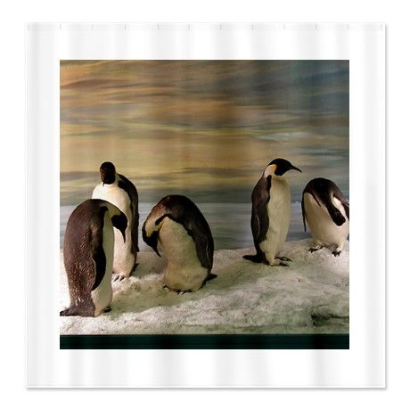 14 Best Images About My Penguin Bathroom On Pinterest