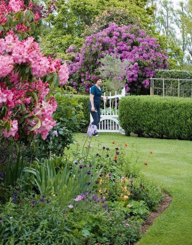 Sichtschutz Hecke Im Garten Rhododendren Pink Tor Weiss Garten