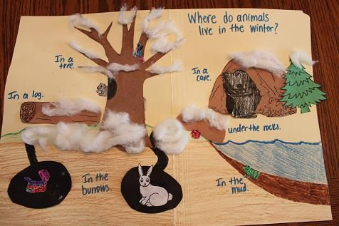 Where do animals live in the winter? Craft or archive to go along with hibernation lesson.