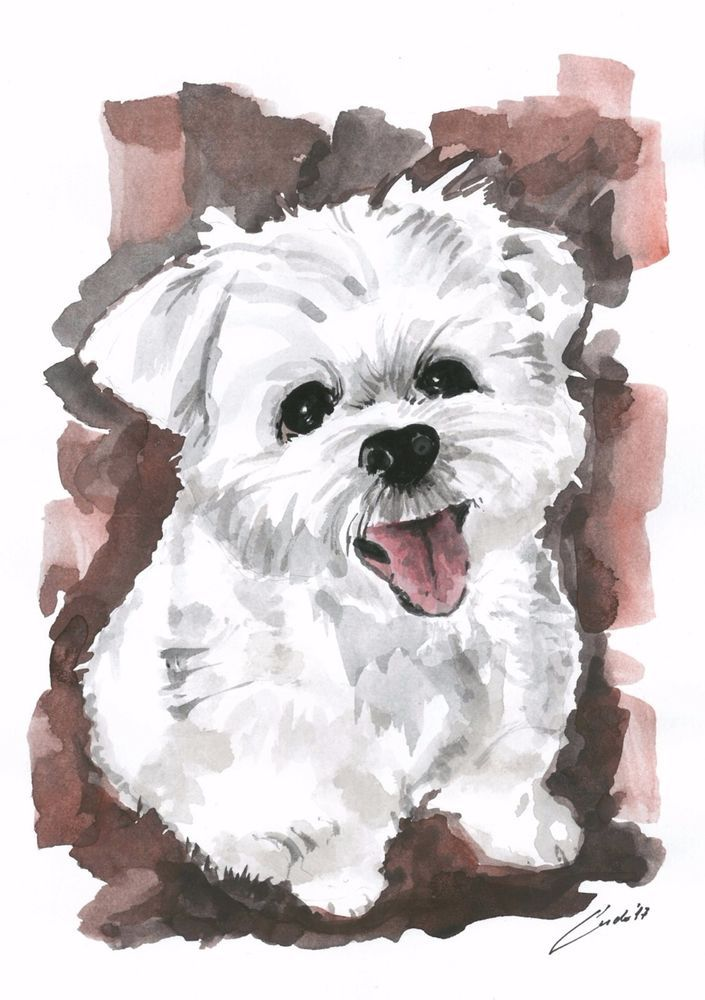 Watercolor painting ORIGINAL Puppy Dog  #IllustrationArt