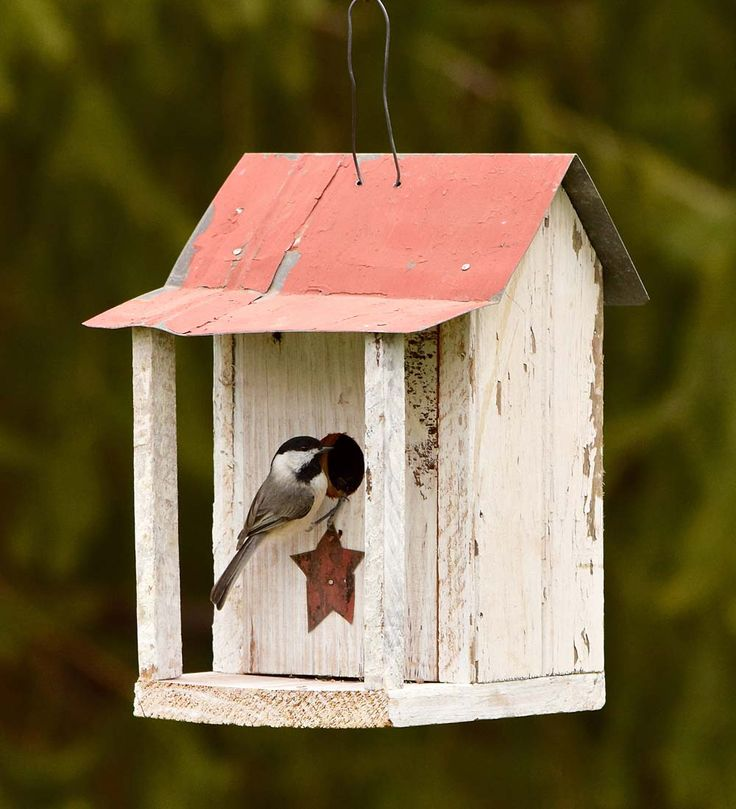 Pennsylvania Dutch Shed Birdhouse with Star | Birdhouses | Our Pennsylvania Dutch Shed Birdhouse with Star is a truly unique home for your feathered friends! The classic, red-metal roof combine with the white base and columns to pay stylistic homage to the Pennsylvania Dutch. Plus, for even more rustic flair, we've even added a red Penn Dutch star just below the entrance to match the roof.