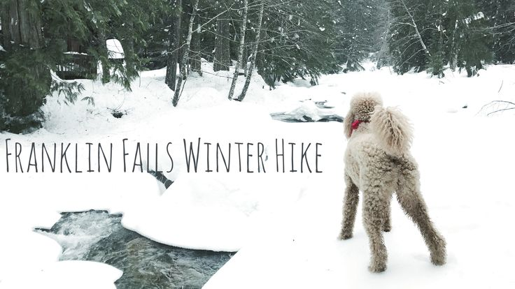 Franklin Falls - Hiking in the winter is a winter wonderland. It has everything you can think of on a hike including rivers, cabins, wooden bridges and the main attraction, the waterfall! #Hiking #Waterfalls #Seattle #FranklinFalls #Winter #winterwonderland #SnoqualmiePass #Washington