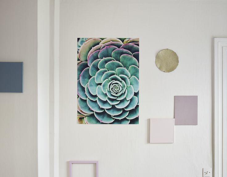 Το πόστερ BILD περιλαμβάνει ένα κακτοειδές φυτό σε τιρκουάζ τόνους και τραβάει τα βλέμματα, προσδίδοντας φρεσκάδα στον τοίχο.
