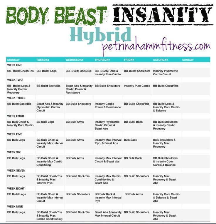 Body Beast and Insanity hybrid workout calendar | Workout ...