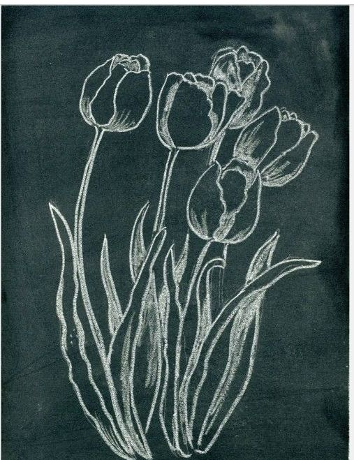 Blackboards with seasonal flower illustrations