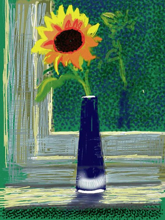 iPad Sunflower - David Hockney British b.1937-
