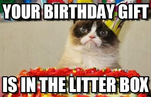 Knitting Birthday Meme : Slapcaption caption funny photos and meme gallery