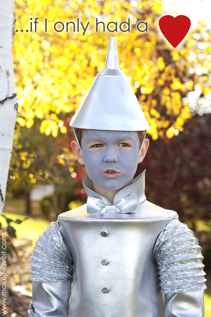 Best 25+ Wizard of oz costumes diy ideas only on Pinterest ...