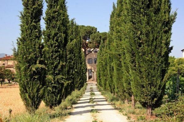 Villa met privé zwembad in de glooiende heuvels van Toscane