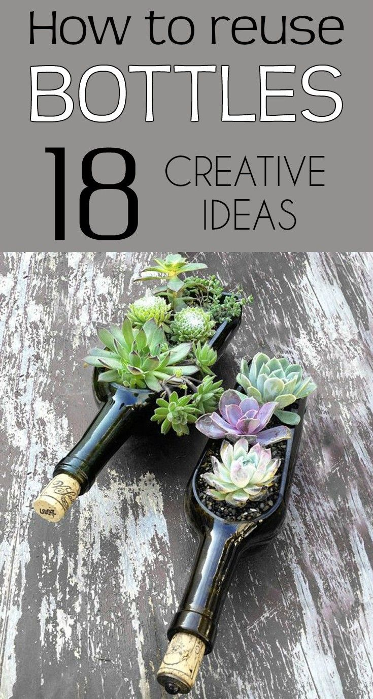 How to reuse bottles - 18 creative ideas - Gardaholic.net