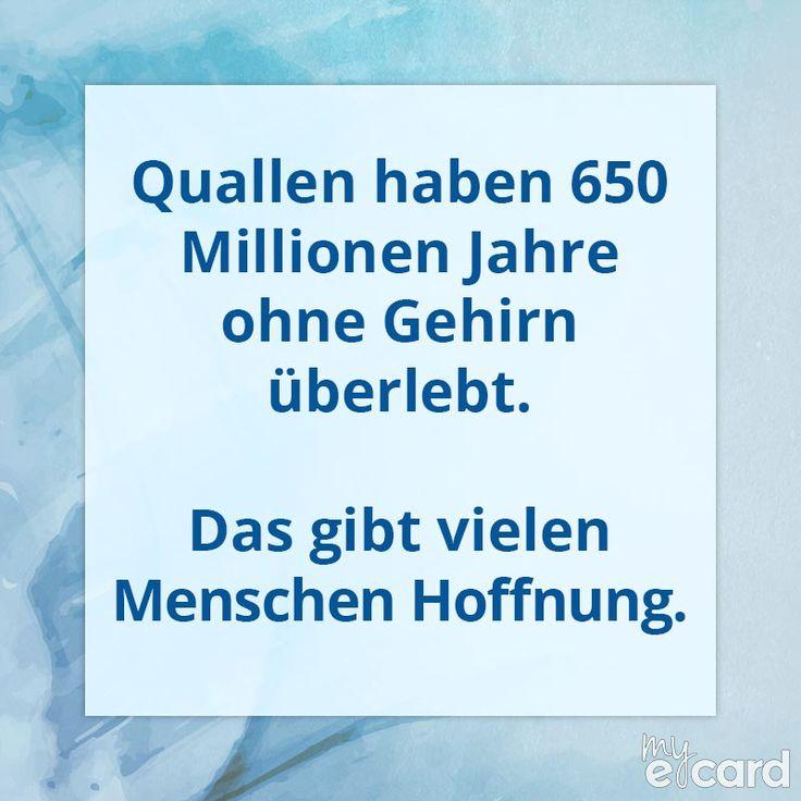 Quallen haben 650 Millionen Jahre ohne Gehirn überlebt. Das gibt vielen Menschen Hoffnung. my-ecard.de ✔ kostenlose e-Cards & Spruchbilder ✔ individualisierbar ✔ per WhatsApp, Facebook oder Twitter versenden ✔ Zitate, coole Sprüche ✔ Jetzt kostenlos starten