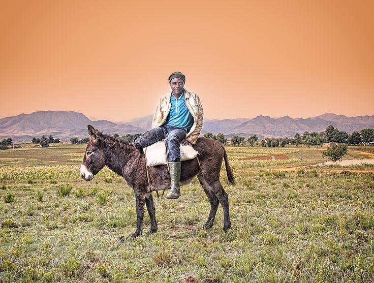 Donkey transport by Louis Kleynhans on 500px