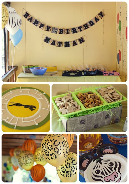 Wild Kratts party stuff