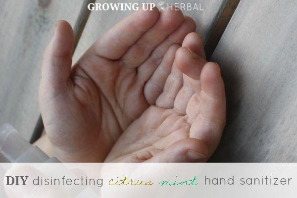 DIY Disinfecting Citrus Mint Hand Sanitizer 2 More Kid-Friendly Essential Oil Blends