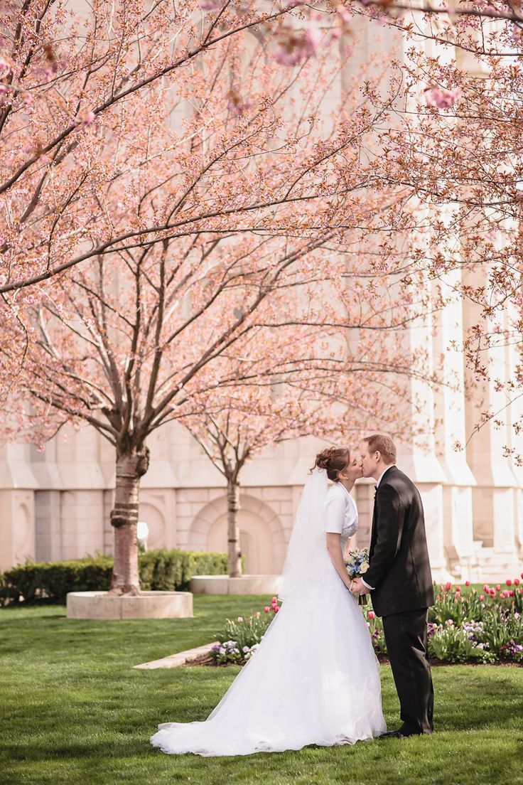 cherry blossoms dating and marriage