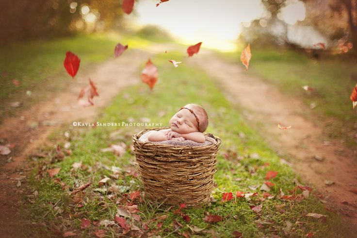 Inspiring Image of the Week by Kayla Sanders Photography on LearnShootInspire.com #newborn #photography