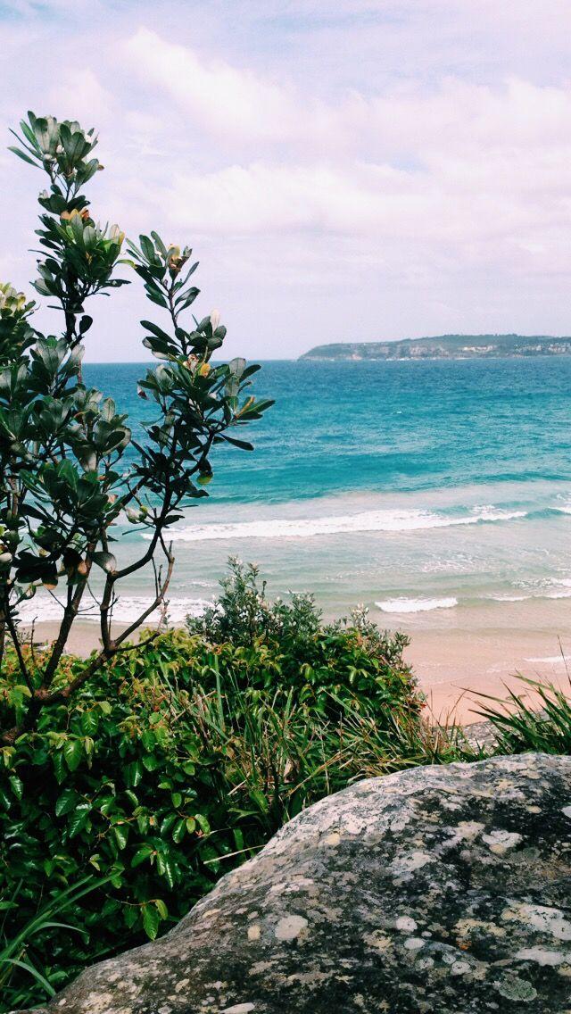 North Curly ♡ @bella_lucani #beach #summer