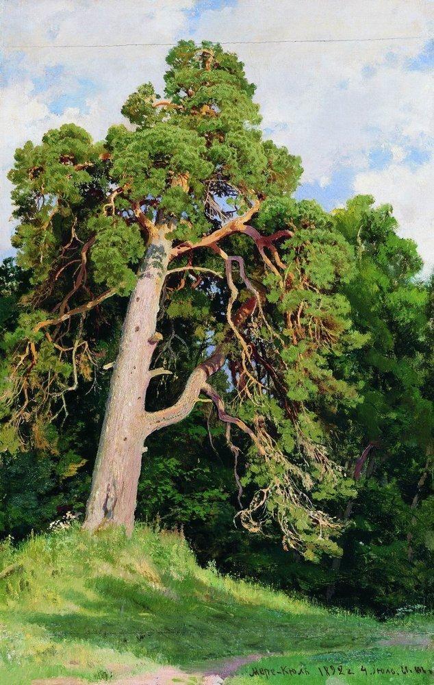 Ivan Shishkin Pine -