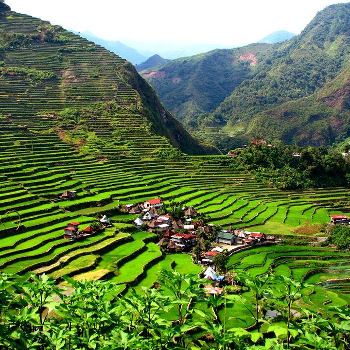 Banaue Rice Terraces, Philippines / Рисовые террасы Банауэ на склонах Кордильер, Филиппины
