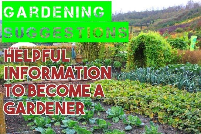 How To Successfully Grow A Healthy Organic Garden – Gardening Activities