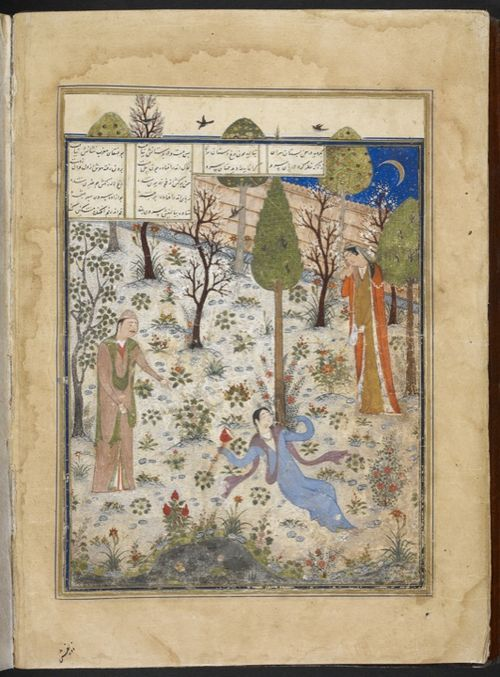 Prince Humay and Azar Afruz find Bihzad drunk, sleeping under a cypress tree
