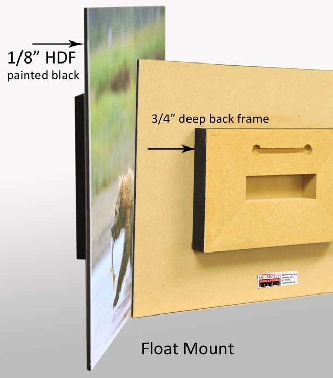 Float Mount picture $32.78 #float #mount #picture #photo #images
