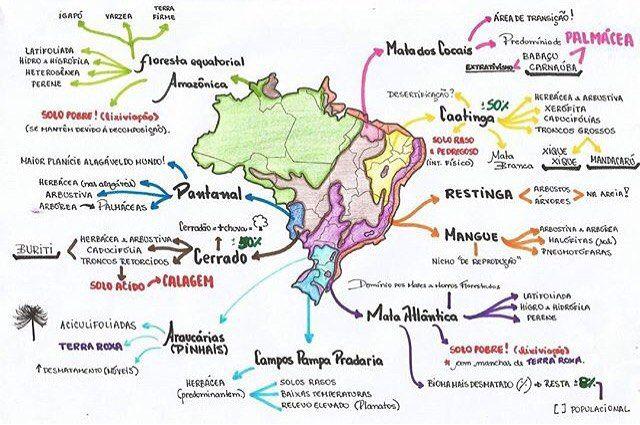 Biomas brasileiros