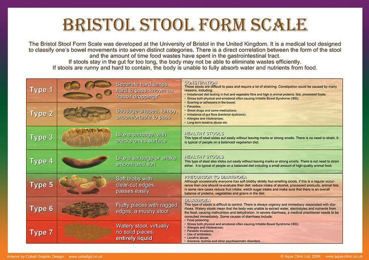 Image result for bristol stool chart pdf   Bristol stool ...
