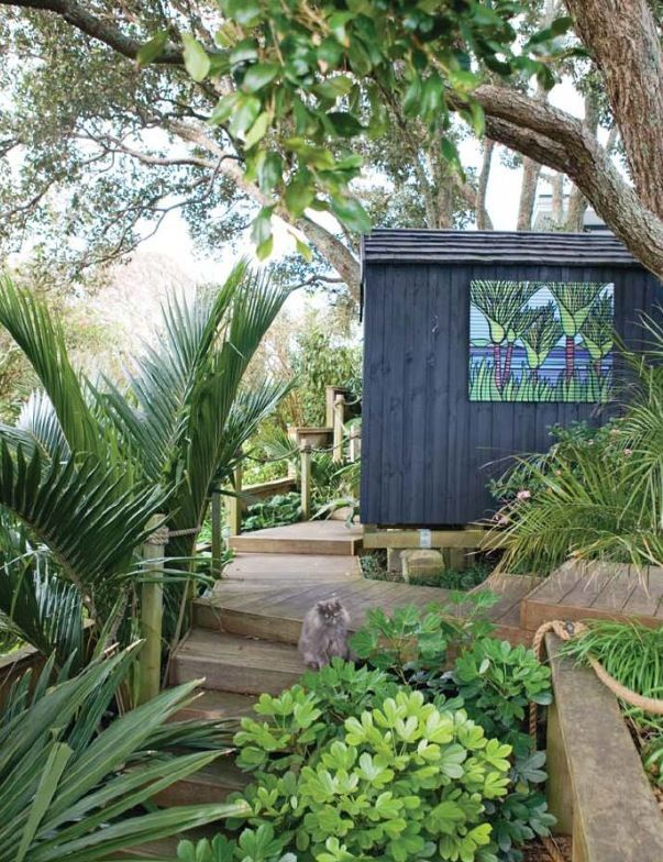 Nikau palms and other New Zealand native garden