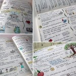 more Nature Journal Ideas