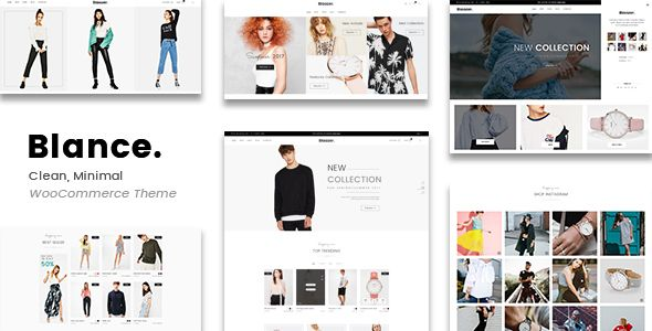 Blance is a unique, clean and professional WordPress theme perfect for promoting and selling your products online. The theme offers unlimited color.
