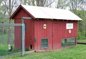 Thinking about starting a hobby chicken farm here are for Hobby farm plans