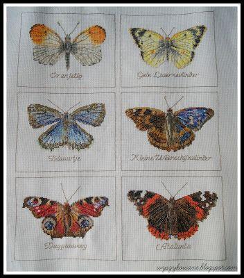 Wyszykowane: Motyle Thea Gouverneur