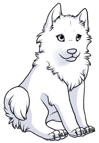Colouring Pages For Girls Border Collie Puppy Google