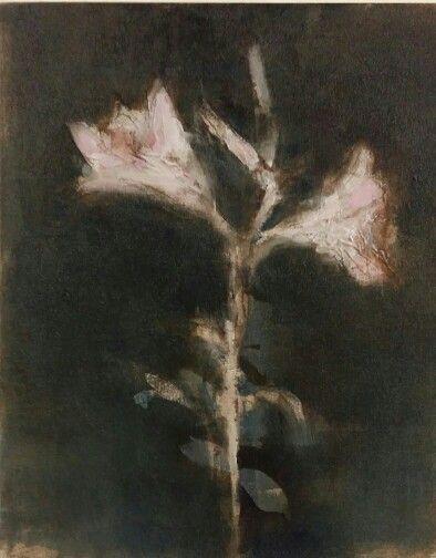 Lilies #pascalechandler