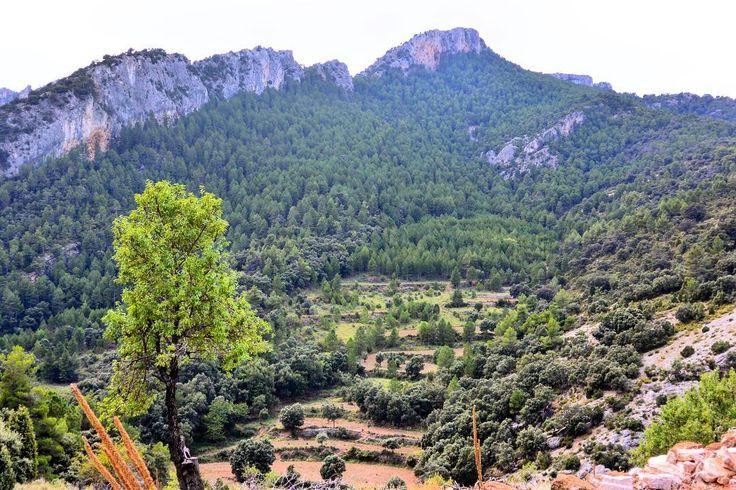 Estos son #ElsPorts .  Esto es cerca de #Beceite  #Mountain  #hotel #hotelviews #travel #viaje #viatge #vouyage #reise #travelling #instatravel #montaña #mountain #senderismo #verde #Spain #España #Aragón #Teruel #Matarranya #nature #rural #catalunya #tortosa #cataluña