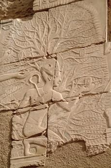 Temple of Seti l