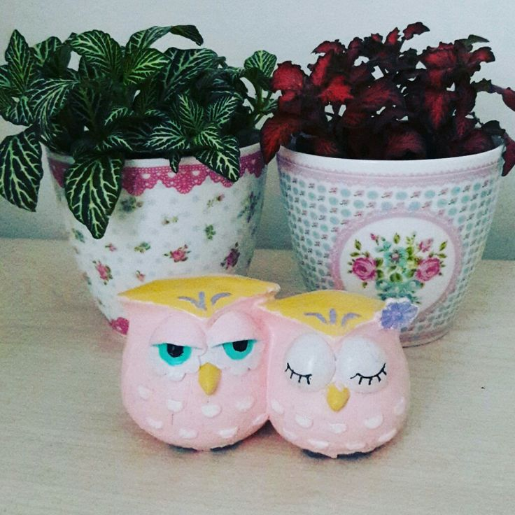 #kokulutas #kokulutasbaykus #dekoratifbaykus #decorativeowl #owl #homedecor #homesweethome #handpainting