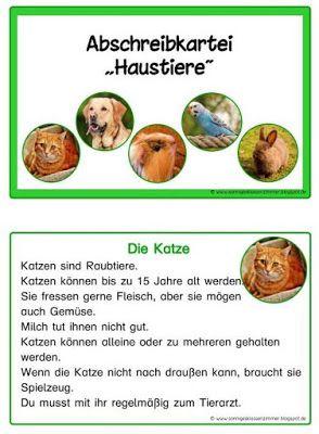 """Sonniges Klassenzimmer: Lese- und Abschreibkartei """"Haustier"""" in Druckschri..."""