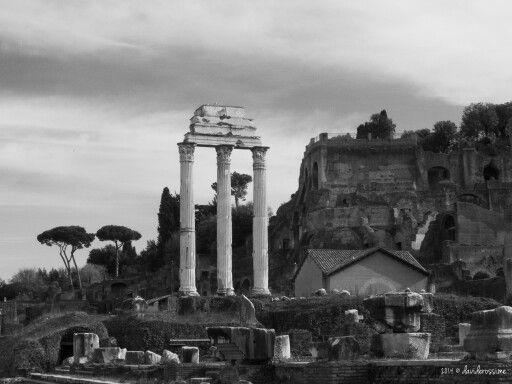 Forum Magnum - Rome Photography  https://plus.google.com/116230781913085550215/posts/D2ZNm2Yq7Nr