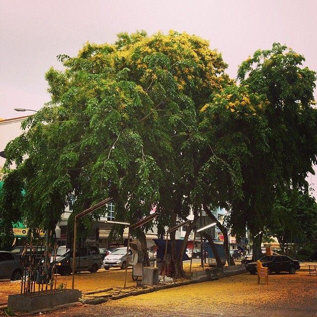 #fall ? #batam